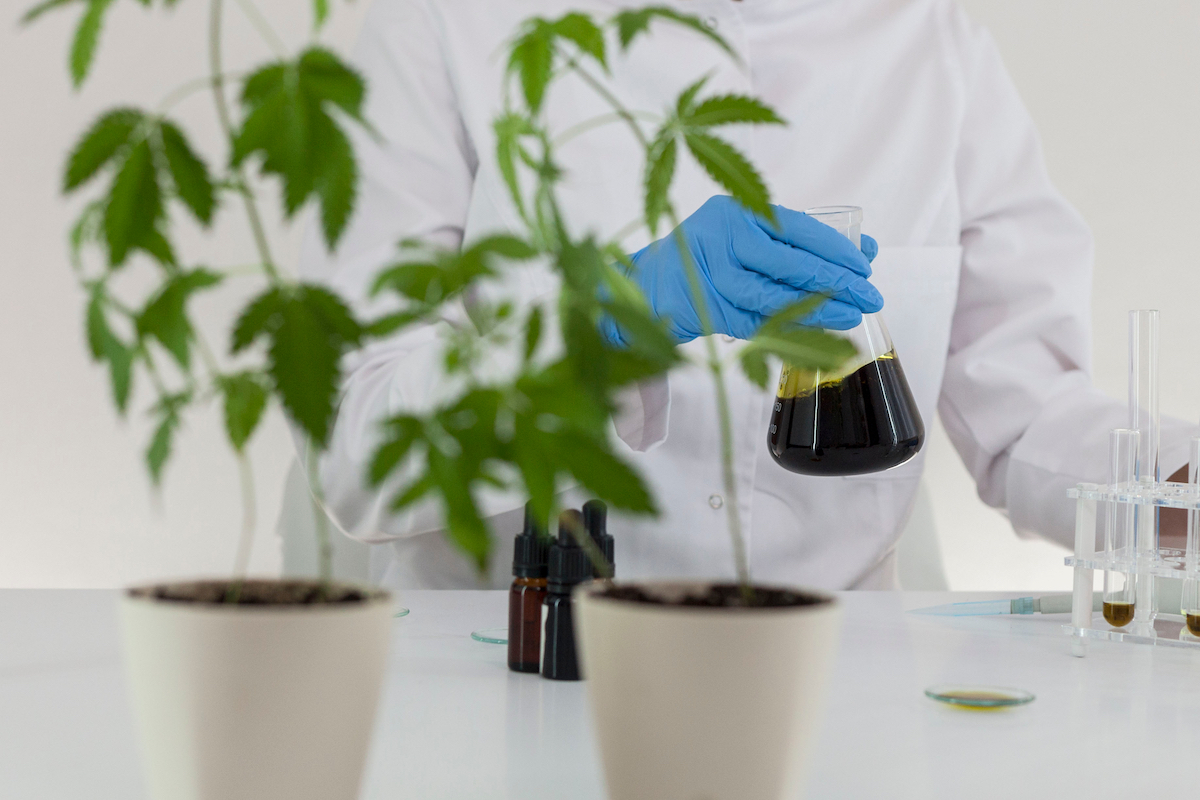 Knowde Group and LMC Manna partner to drive cannabis research