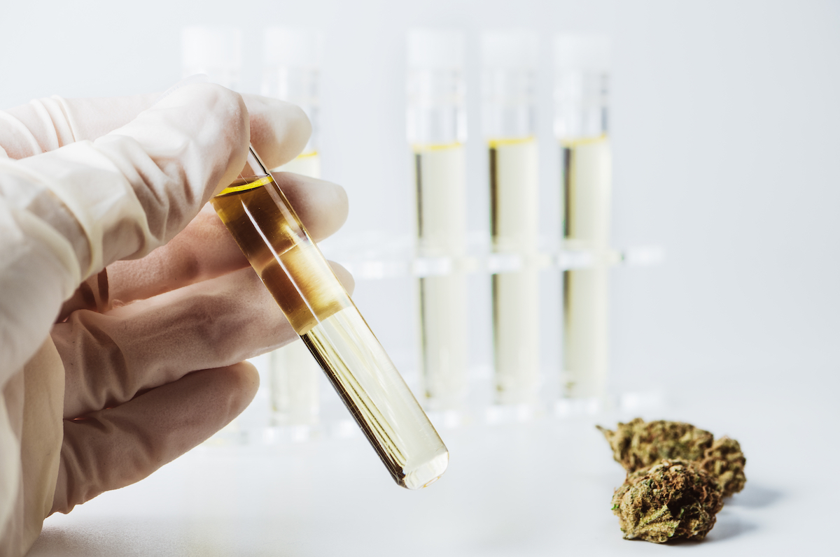 Patent for THC as Alzheimer's treatment granted to India Globalization