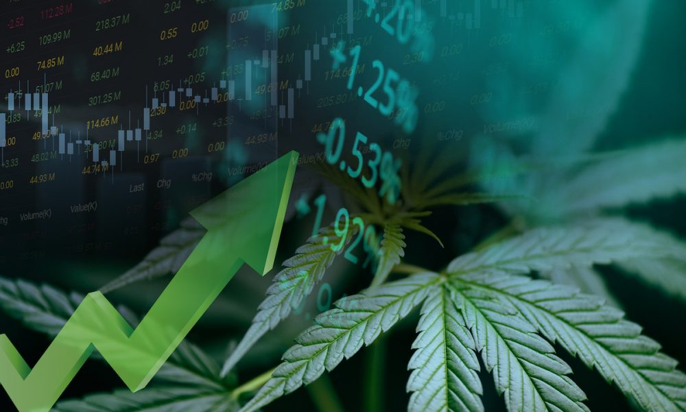Tilray sees net revenue increase to $513m from last year