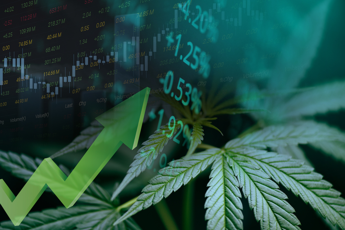 Roth Capital to host Women Cannabis Pioneers Investor Conference