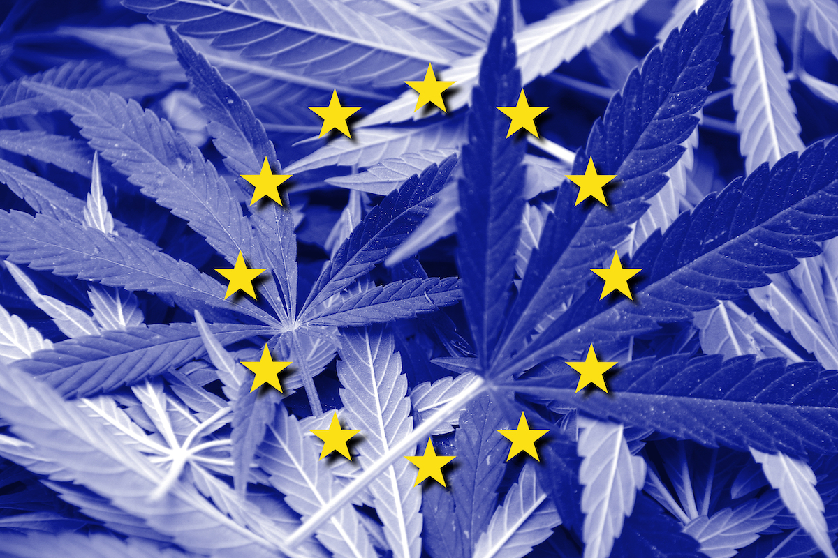 Kanabo and Materia Ventures: innovating the European cannabis supply chain