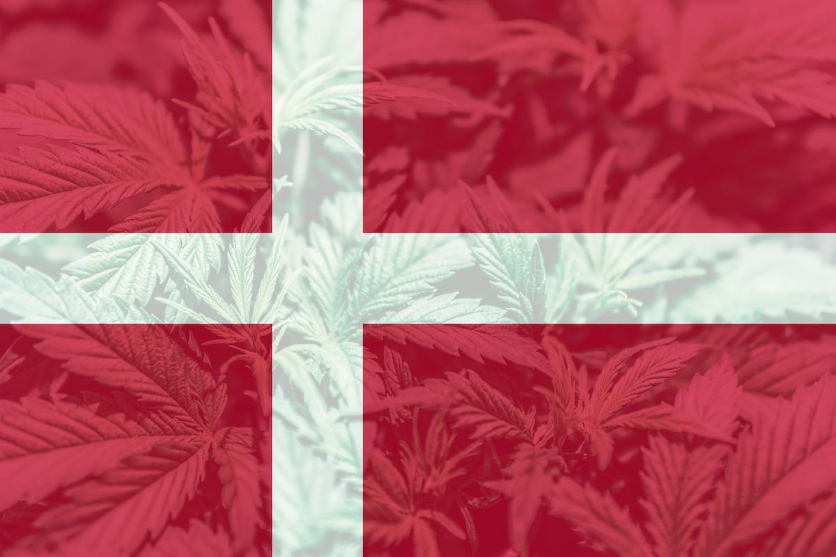 First Denmark cannabis shipment reaches Australia's Little Green Pharma