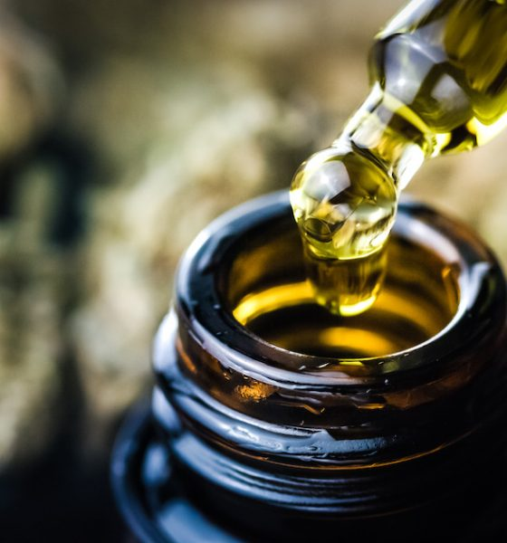 MediPahrm completes cannabis oil delivery to Germany's Vayamed